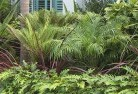 Abbeywood Tropical landscaping 2